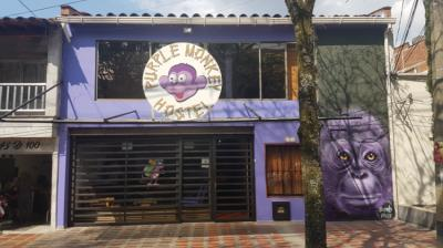 Ostelli e Alberghi - Purple Monkey Hostel